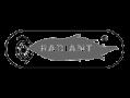 radiant-marcas-representativas-servitis